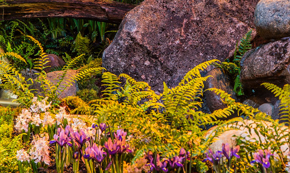 Landscape Design U0026 Installation
