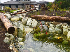 Bellingham WA Landscaping Installation